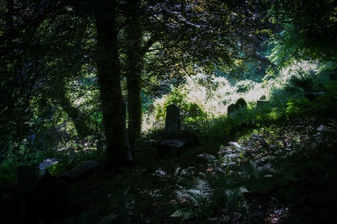 Minster Churchyard, near Boscastle, Cornwall